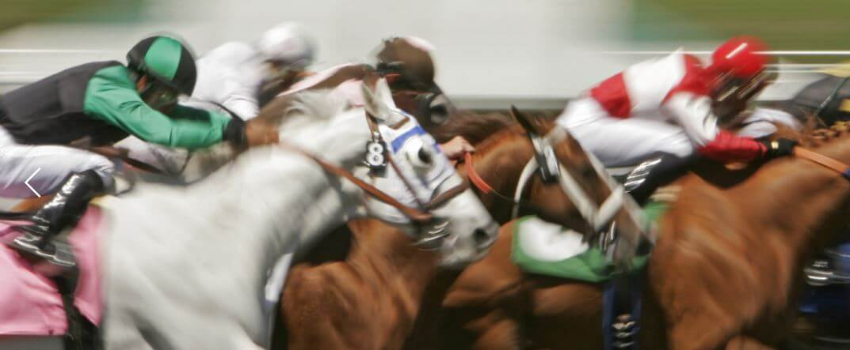 SUNBETS LIVE HORSE RACING