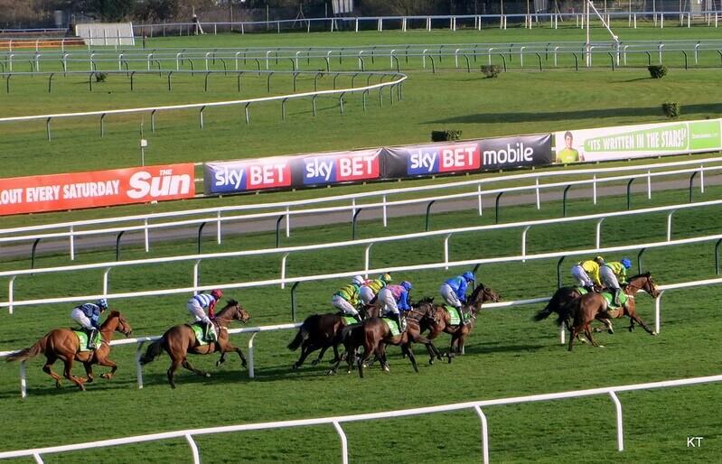 coral Cheltenham races
