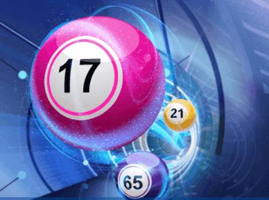 bingo offer coral